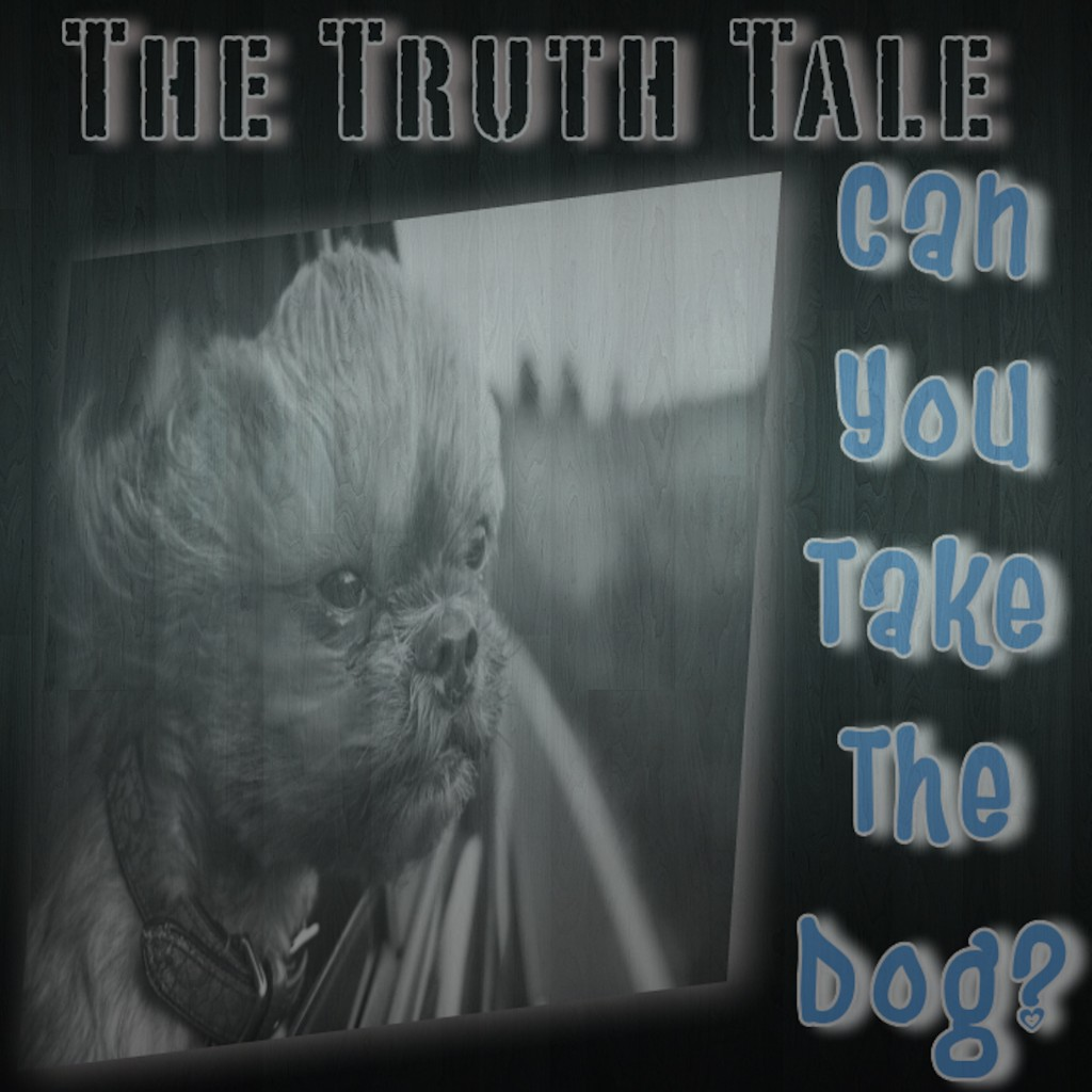 New Music Release: Can You Take The Dog? By The Truth...